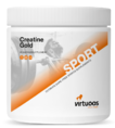Virtuoos Creatine Gold 300GR